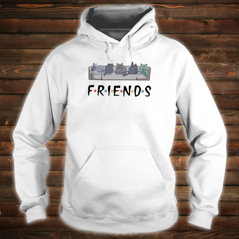 Grey cats on the sofa friends shirt hoodie